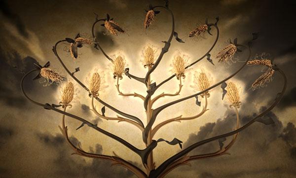 Bad Grain Eats Healthy Grain
